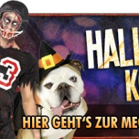 Halloween Horror Fest 2013 im Movie Park Germany