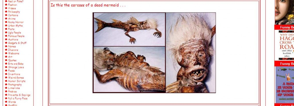 Screenshot: http://www.weird-websites.info/Real-or-Fake/carcass-of-a-dead-mermaid-sea-creatures-pictures-photos.htm