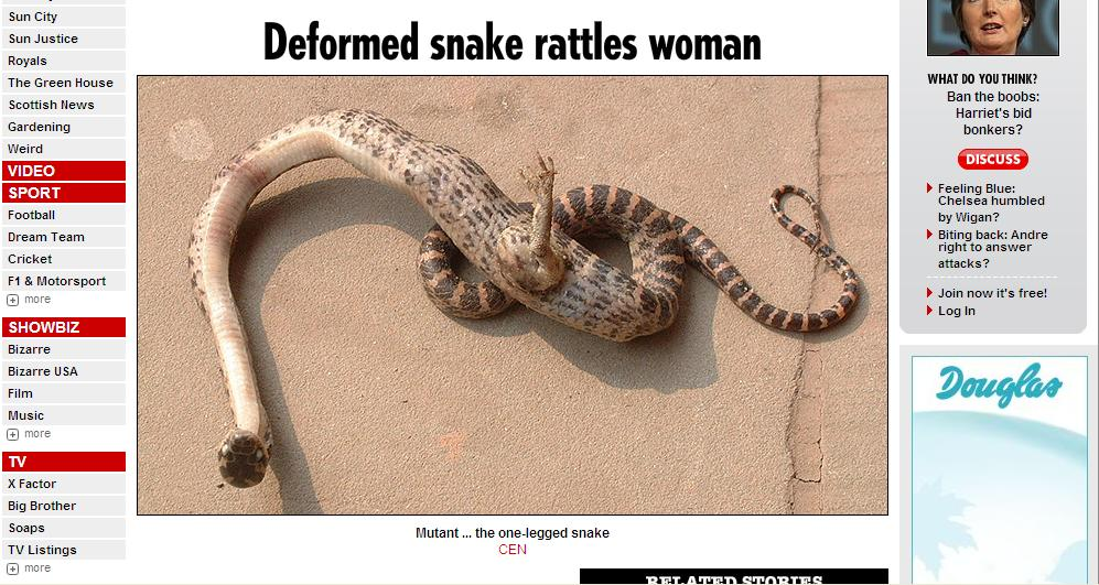 Screenshot: http://www.thesun.co.uk/sol/homepage/news/2636889/One-legged-snake-found-in-China.html